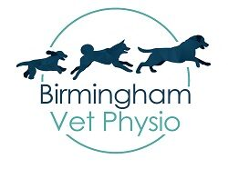 Birmingham Vet Physio